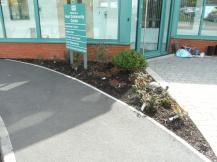 Hook in Bloom planting at Community Centre April 2016 7